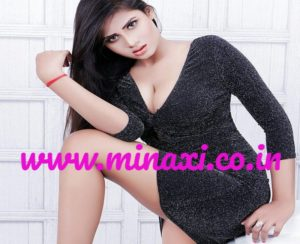 VIP Escorts In Delhi